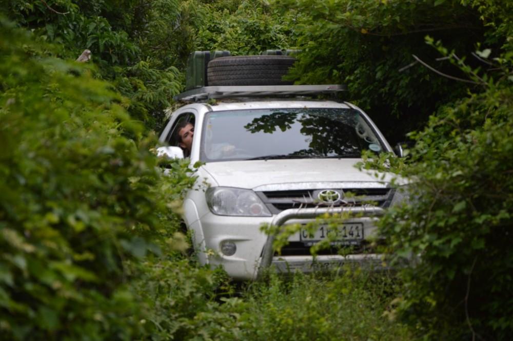 4*4 dans la forêt Transkei Afrique du Sud